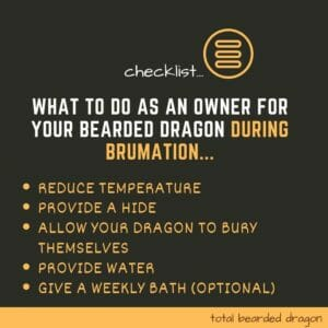 brumation checklist for bearded dragon